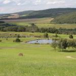 golf_open_tour_-_karlstejn_2011_138_20131223_1956151638
