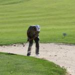 golf_open_tour_-_konopiste_2011_90_20131223_1764083277
